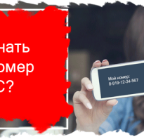 Как узнать на ком номер телефона мтс