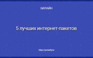 Как подключить интернет пакет на билайн казахстан